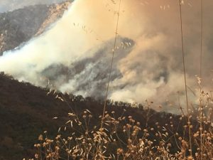 Sacata Fire about 15 miles up 10S69 Road - photo courtesy of Julie Devine Marshall