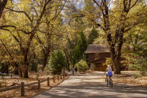 yosemite-madera-visitors-bureau-yosemitevalley_fall_klawson-4web-2