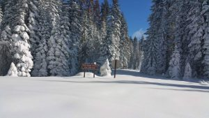 mcso-rescue-sunday-nov-27-2016-chilkoot-campground-cold-springs-summit-courtesy-mcso