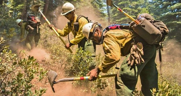 Active Firefight Remaining On Ferguson Fire Is Inside Yosemite ...
