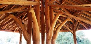 Wooden giraffes holding up the roof