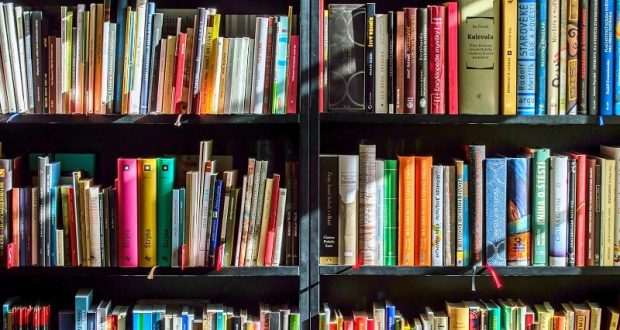 Row of library books