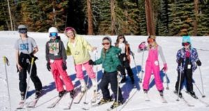 Picture of people skiing