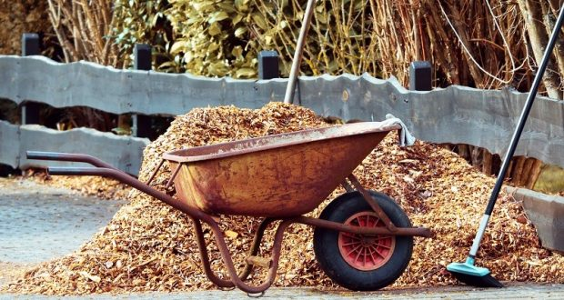 Picture of a wheelbarrow with mulch in it