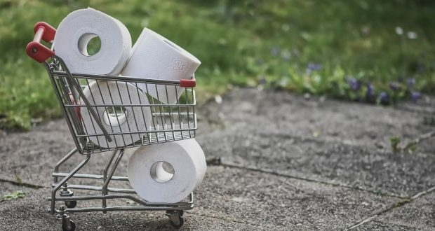 Picture of mini shopping cart full of toilet paper.