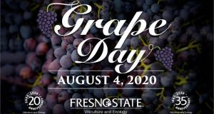 Picture of Grape Day logo.