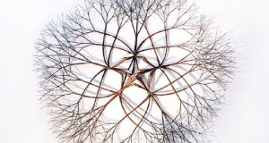 Image of an artwork from Ruth Asawa.