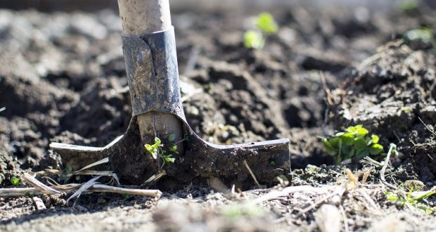 Image of a shovel in the ground.