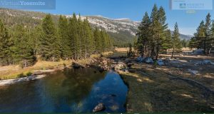 Image of Lyell Canyon in Yosemite.