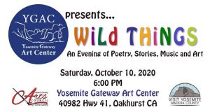 Image of Wild Things flyer.