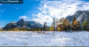 Image of Leidig Meadow in Yosemite Valley