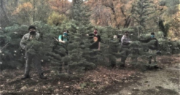 Image of the North Fork Scouts working at their Christmas tree sale.
