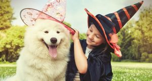 Image of a child and dog dressed up for Halloween.
