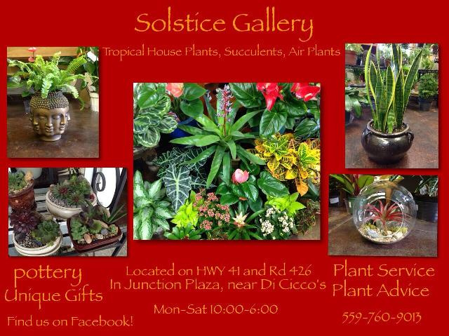 Solstice Gallery graphic