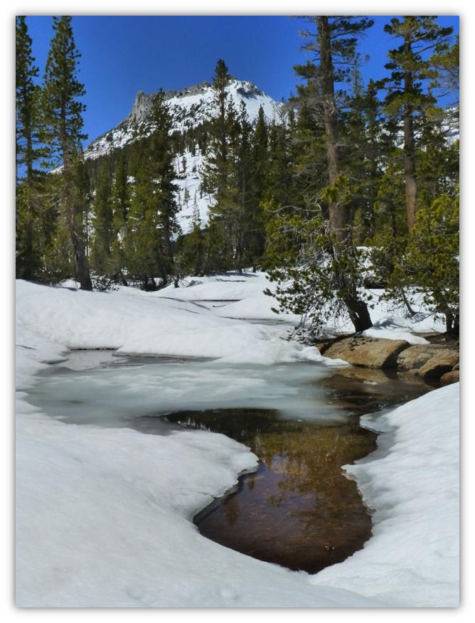 Cathedral Lake Snowshoe 10
