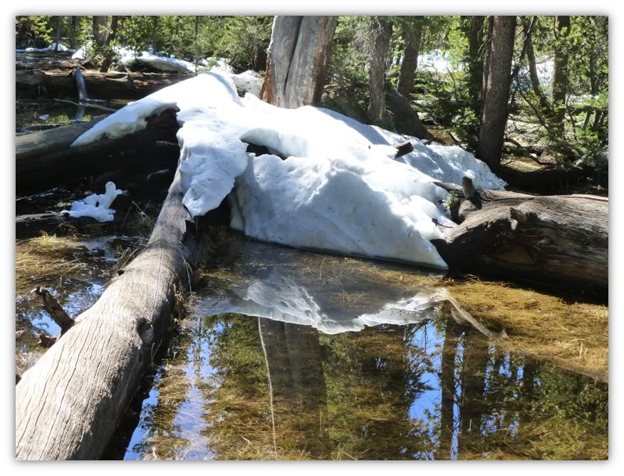 Cathedral Lake Snowshoe 4