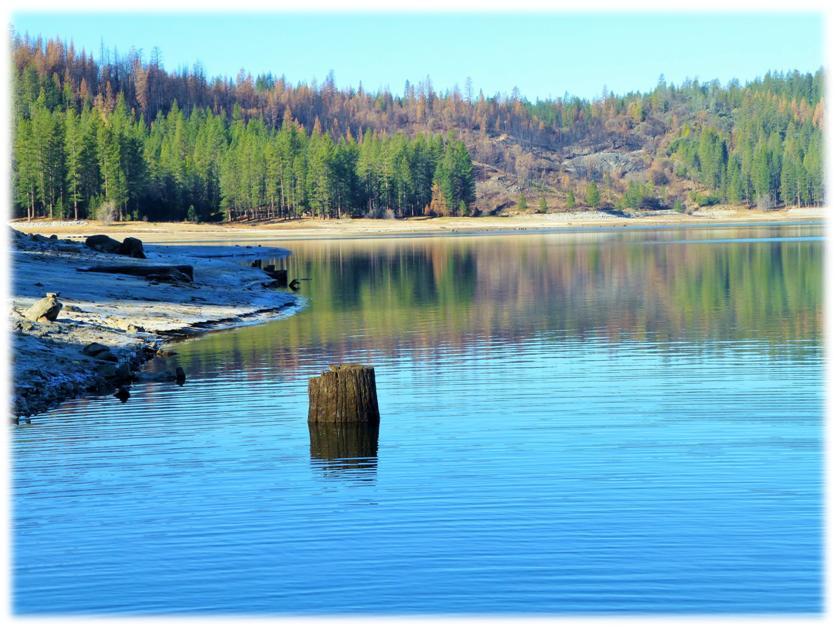 Bass Lake Shore 7