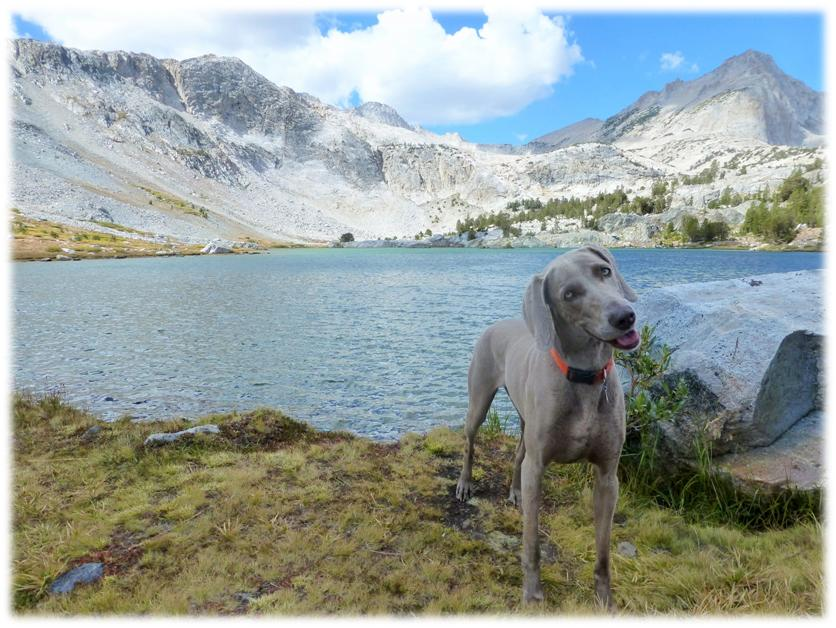 Adventure to the East Side of the Sierras 9