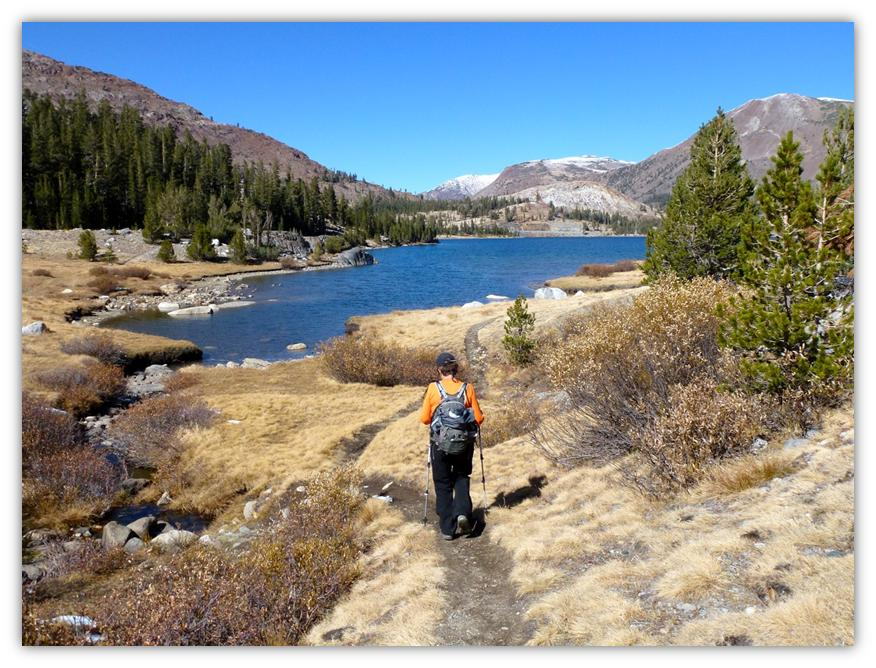 Tioga to Lower Dana Lake 34