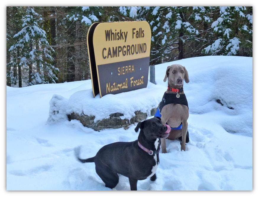 Whiskey Falls 8