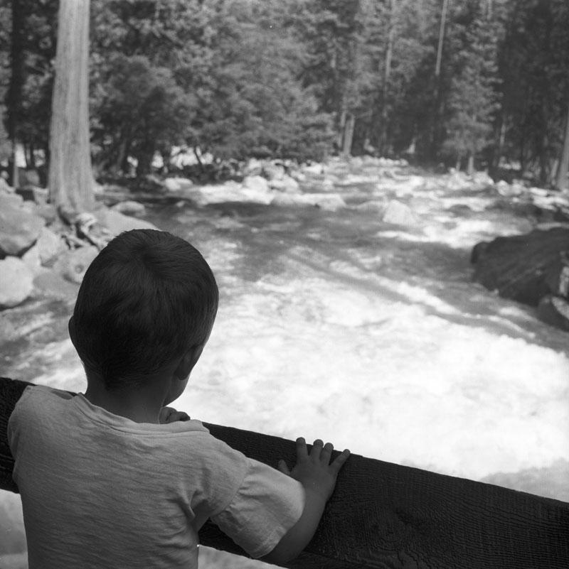 There was no doubt that temperatures were warming as Yosemite Creek came back to life. A D. H. Hubbard photograph