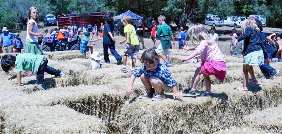 old fashioned country fair 9
