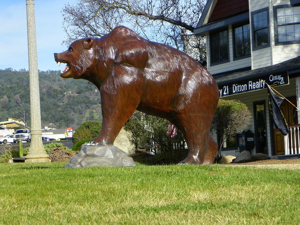 Talking Bear left profile