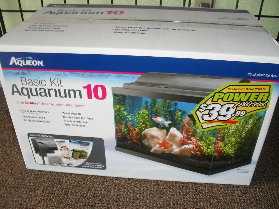 Steves Pets - Kristin Bateman says aquarium kits are the way to go for gifts (and gift certificates) - photo by the Batemans