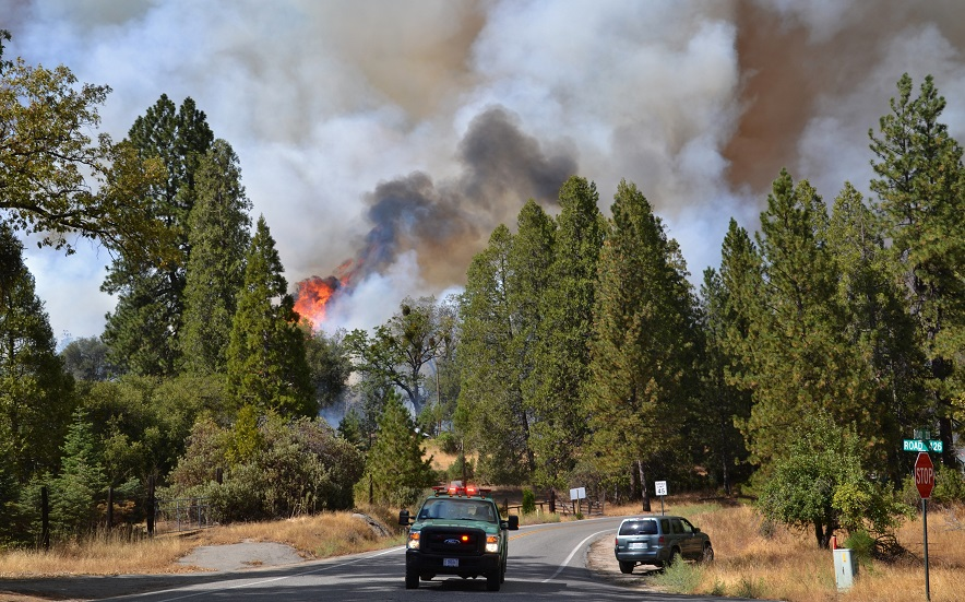 Road 426 at Road 223 Courtney Fire