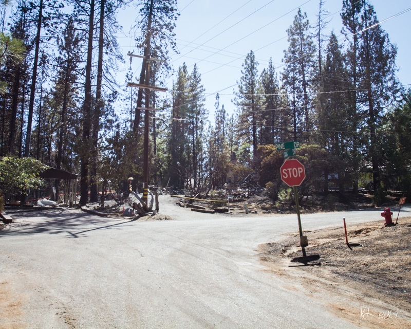 Courtney Fire - Stop - photo by Virginia Lazar Sept. 16 2014