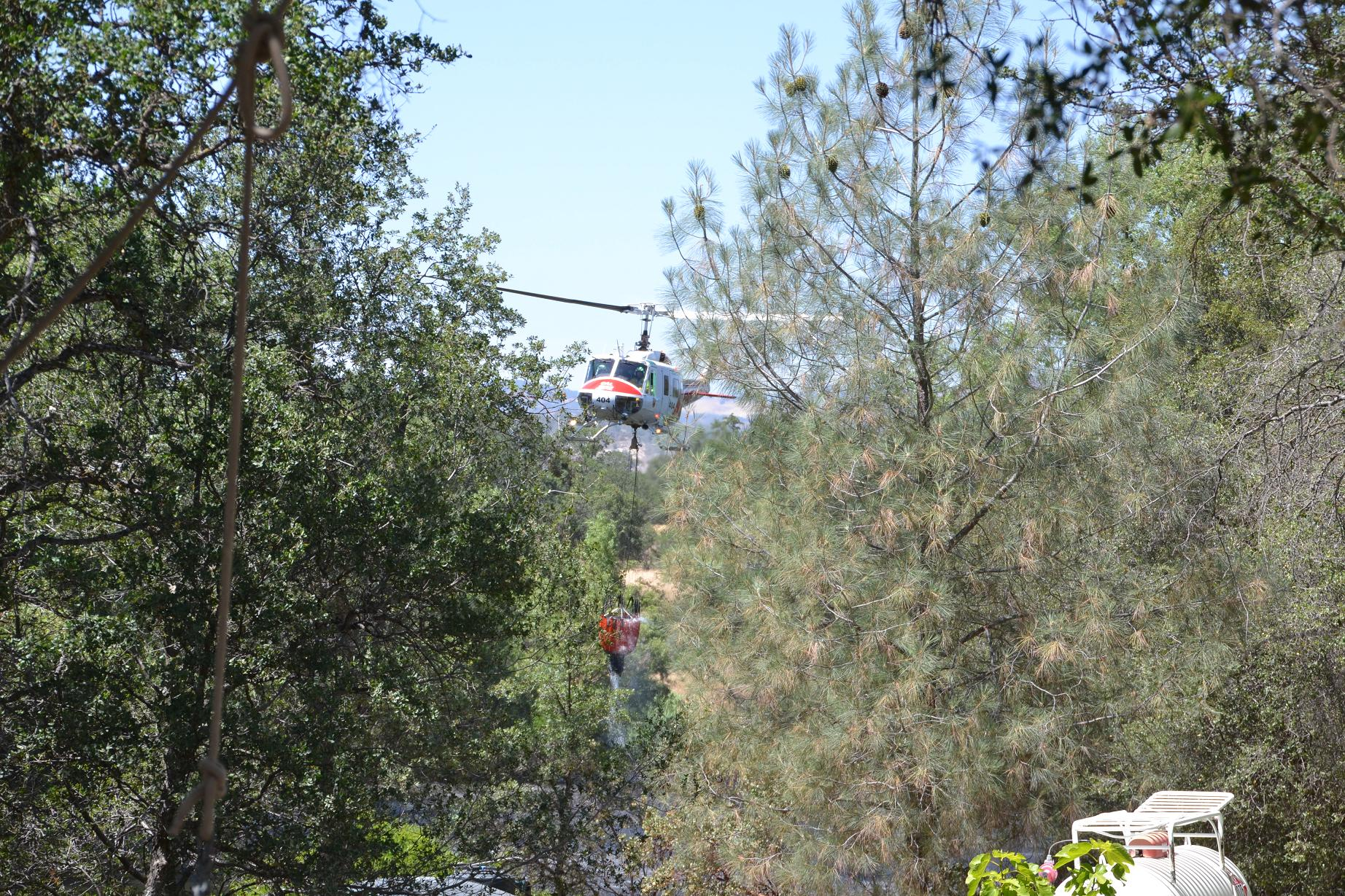 Helicopter 404 in the trees at the pond