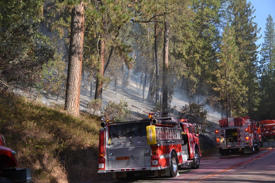 Burn area on north side of Road 274 on Pines Fire