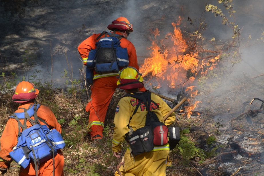 CDCR crews on the Pines Fire