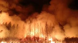 Rim Fire at night - photo from inciweb.org