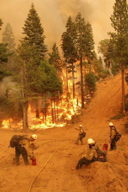 Silver State IHC on South Flank Rim Fire - photo USFS Mike McMillan