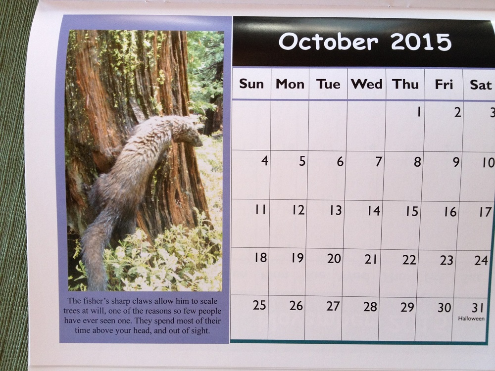 Anne Lombardo wants people to purchase an 18-month Pacific Fisher calendar created by the University of California Cooperative Extention program with awesome Fisher photos on every page from SNAMP Sierra Nevada Adaptive Management Project https://ucanr.edu/survey/survey.cfm?surveynumber=13655