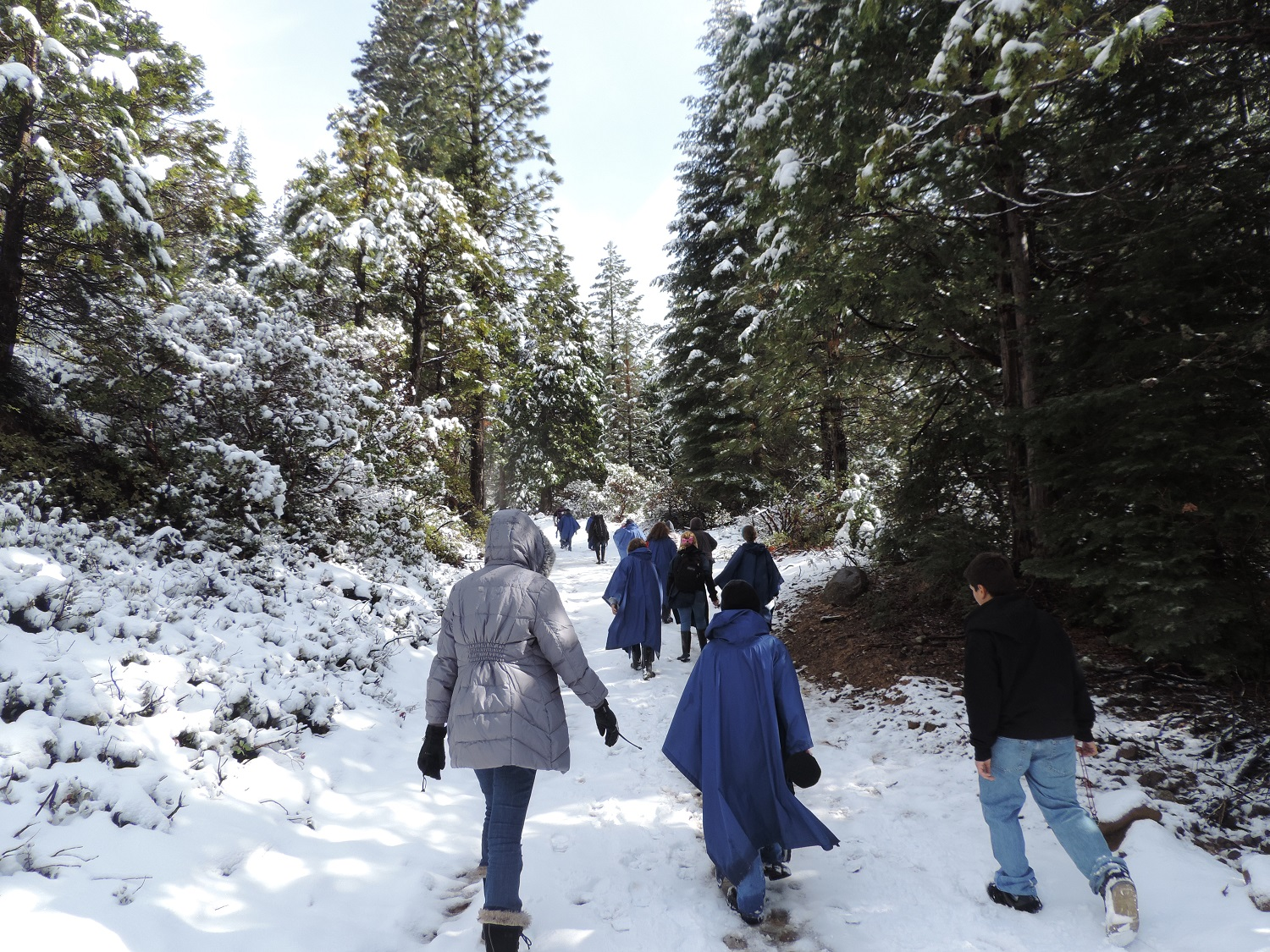 Green Meadows 2014 - Walking away in the snow - photos courtesy of Ronda Clarke