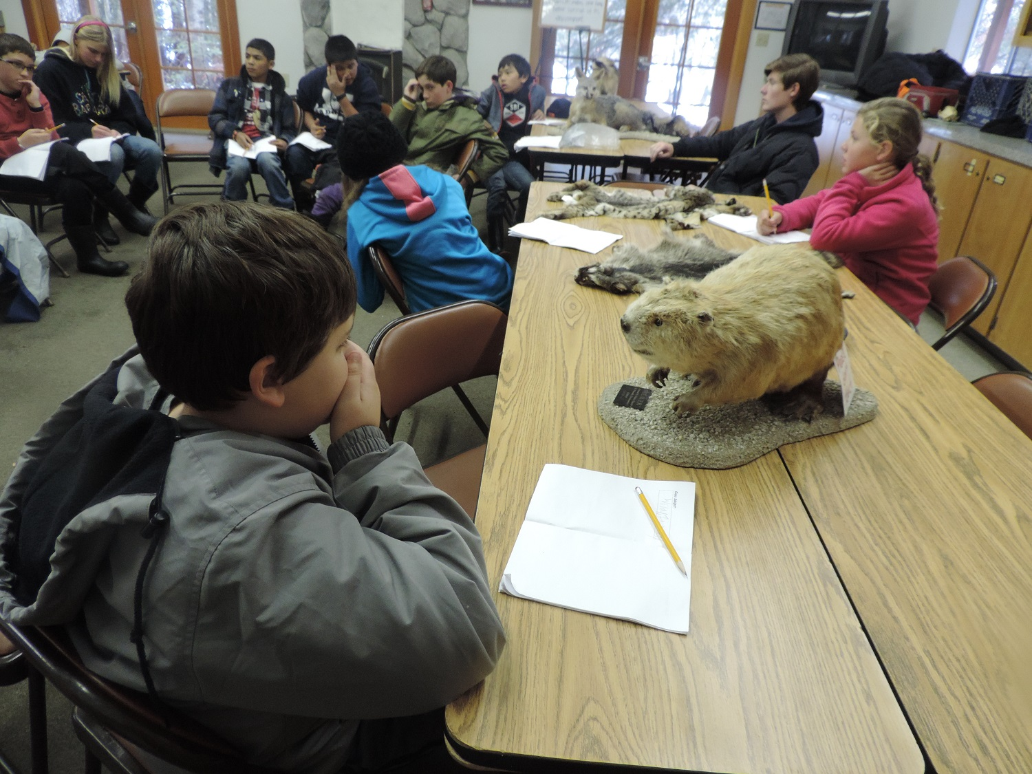 Green Meadows 2014 - students in class with taxidermy - photos courtesy of Ronda Clarke