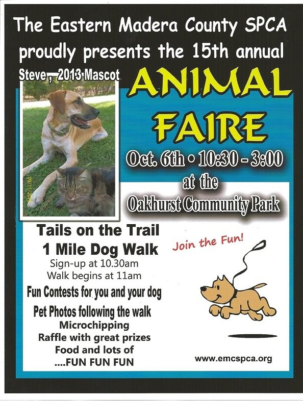 Tails on Trails 2013