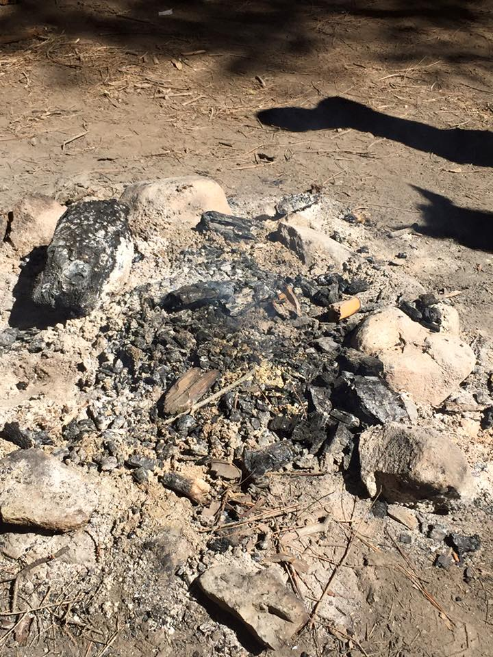 Smoldering campfire at Kelty Meadow Campground on June 18 2015 before the Sky Fire - photo courtesy MSO