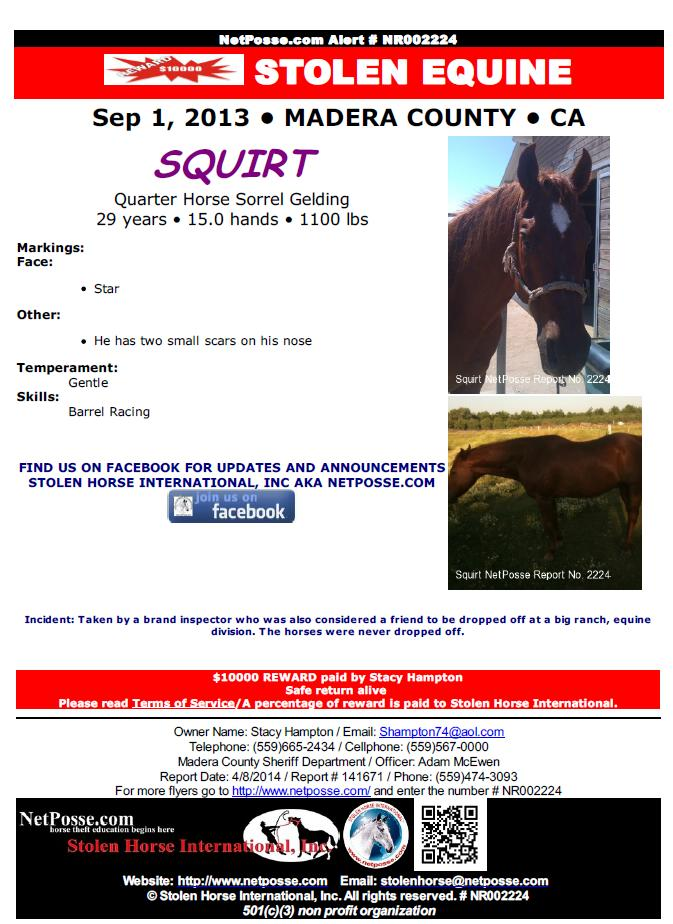 Stolen Equine Poster for Squirt