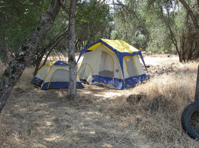 Tents at pot farm in Mariposa County 9-16-13