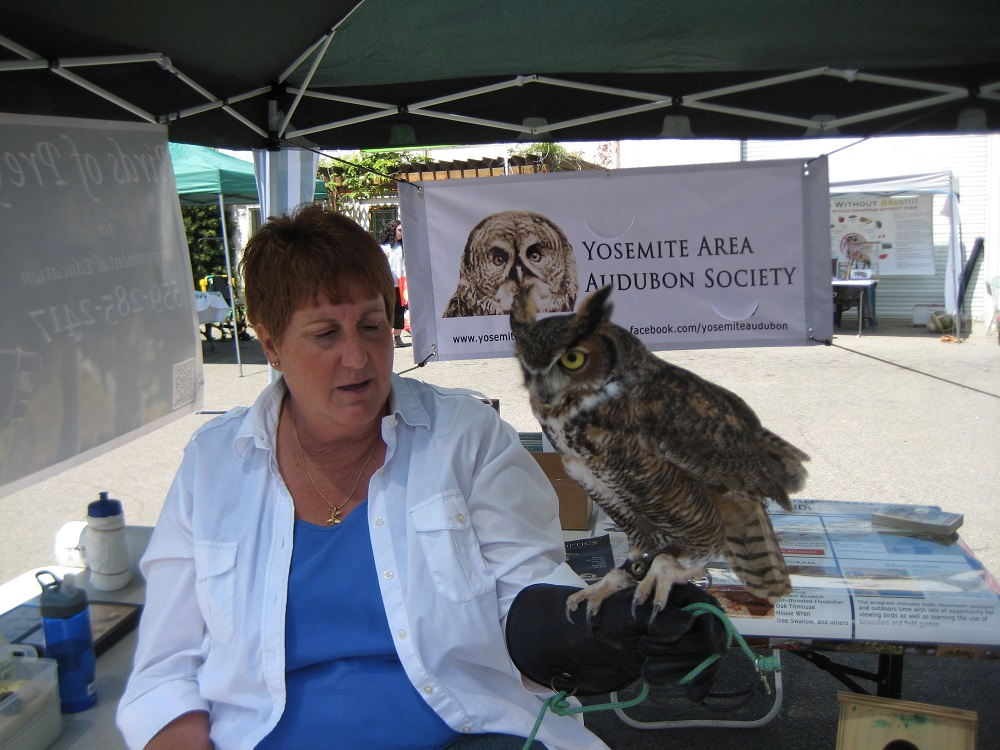 Earth Day for OES Students - learning about owls from the local Audubon Society - photo courtesy of Kathleen Murphy OES Principal 2014