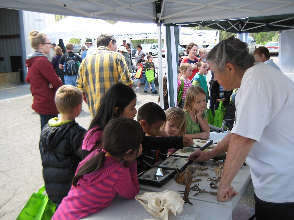 Earth Day for OES Students - kids check out the booths available for viewing and touching cool environmentally relevant objects  - photo courtesy of Kathleen Murphy OES Principal 2014