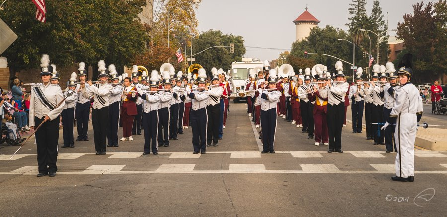 YHS Badger pauses at Veterans Day Parade in Fresno Nov 2014 photo by Steve Montato