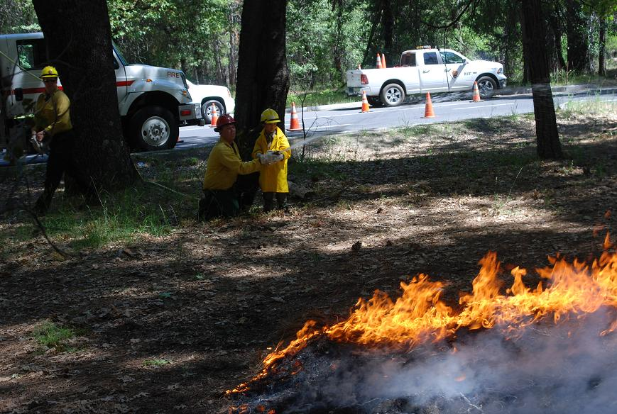 Gabriel Lawan-Ying helps put out a wildfire - photo courtesy of NPS