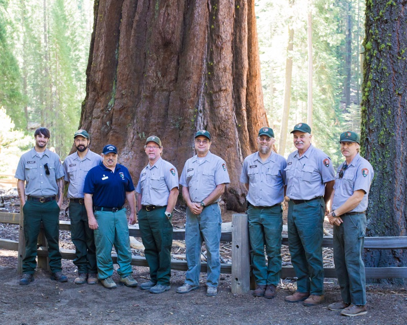 Yosemite Grant Act Anniversary 2014 - A group of National Park Service employees who helped with the 150th celebration in the Grove pose for a photo in front of a Sequoia tree - photo credit Virginia Lazar