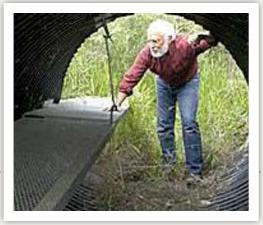 Designing culverts for wildlife use