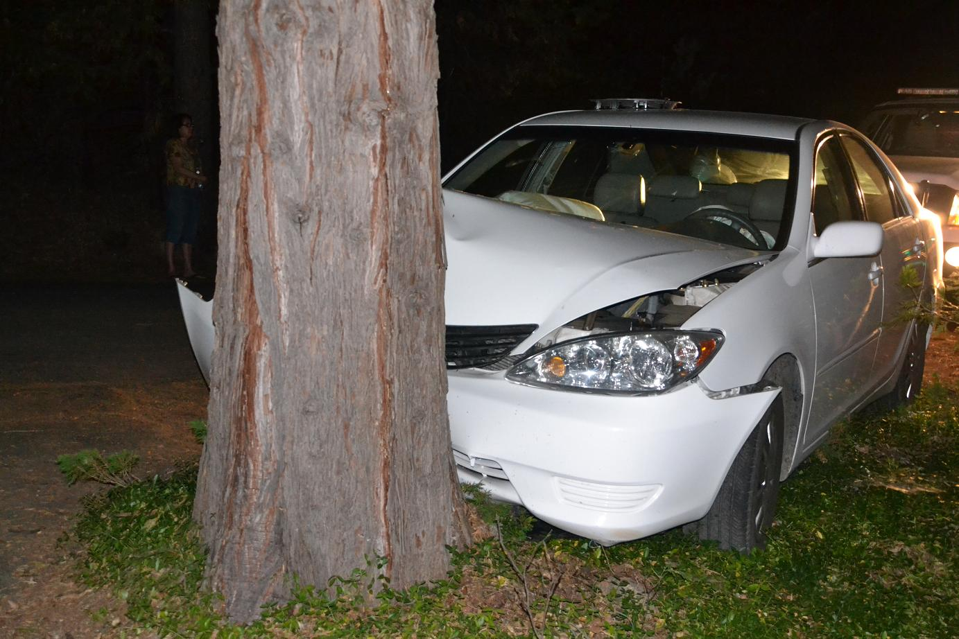 I Crashed My Car Into A Tree