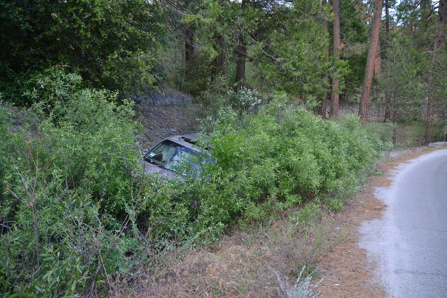 Honda Pilot buried in the willows